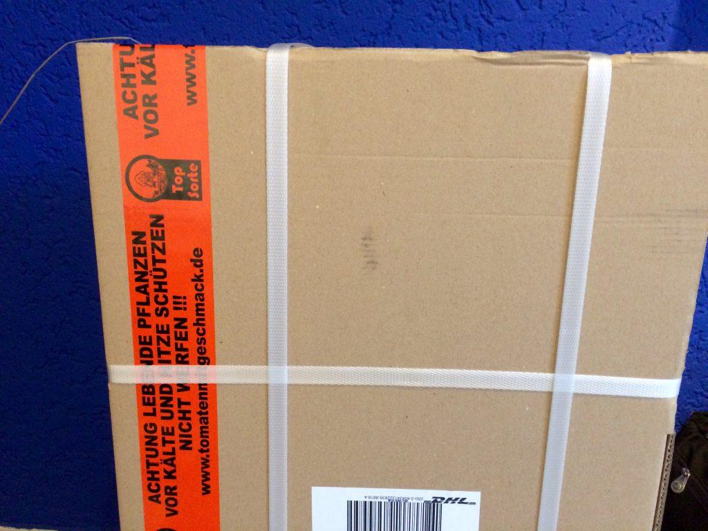 18:50 Uhr: Paket Nr. 2 ist riesig. Hier sind unsere Tomatenpflänzchen drin. Ich freue mich schon auf die leckeren Kirschtomaten.
